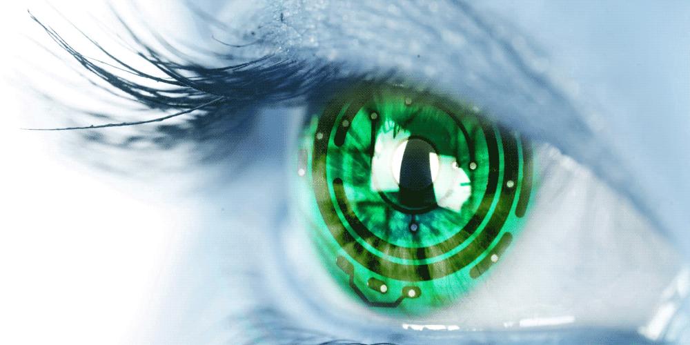 La Biométrica como sistema de seguridad de datos personales