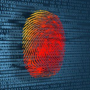 Equipo Ciberseguridad